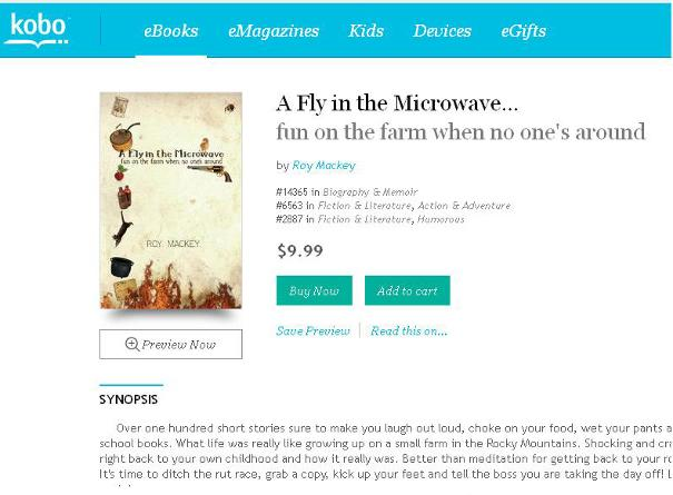 A Fly in the Microwave, roy mackey, steel sculpture, funny short stories